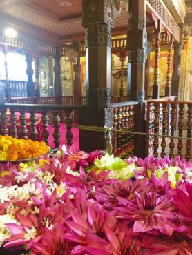Color flower offerings at the Buddha Tooth Relic Temple, Kandy