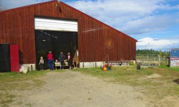 Key Peninsula Farm Tour and Fiber Arts Show