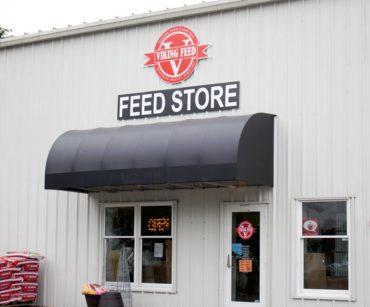 Viking Feed, Kingston