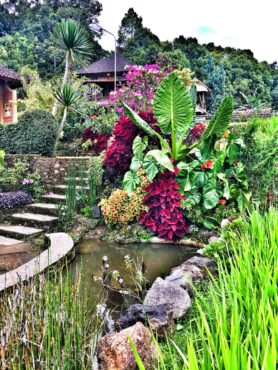 The gardens at Puri Lumbung Cottages