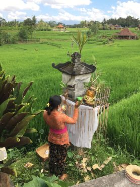 Shrines are tended daily by the women to bring good luck and abundant harvest.
