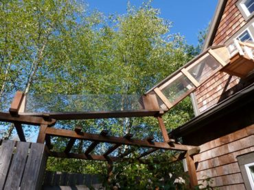 Covered ramp connects the house with the cat enclosure.