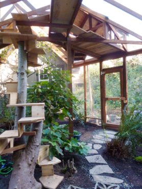 Spiral staircase along a tree trunk and plentiful high platforms for lounging