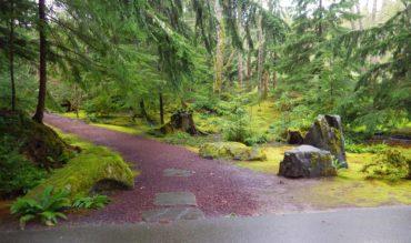 The entrance to the Moss Garden