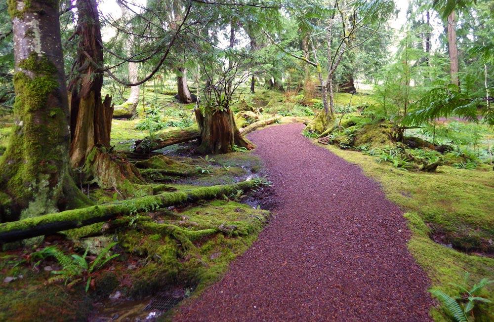 Wshg Net Bloedel Reserve Moss Gardens Featured The Garden