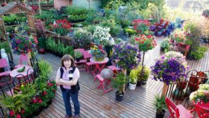 Bremerton City Nursery