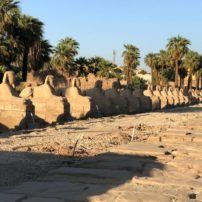 Sphinx-lined Kabash Path that connected Karnak and Luxor (discovered in 2010)
