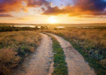 Rural Land Development