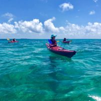 Paddling in the clear turquoise water