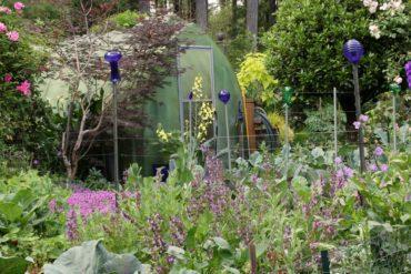 A Garden Sanctuary
