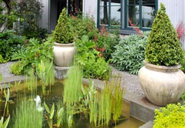 A gentle bubbling fountain keeps a mild movement on the water that will not disturb the plants.