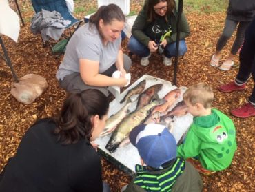 Biologist sharing salmon anatomy with budding scientists