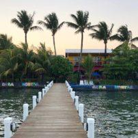 Tropical Livingston on the Carribean