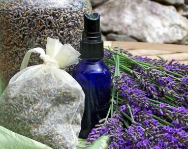 Winter Skin Care with Herbs