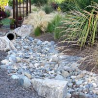 A ditch is now a dry creek bed in the summer.