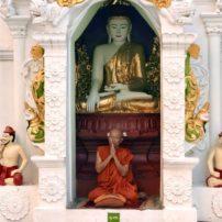 Monk praying at Shwedagon, Yangon