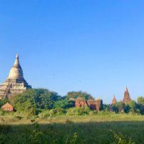 Stupas in Bagan