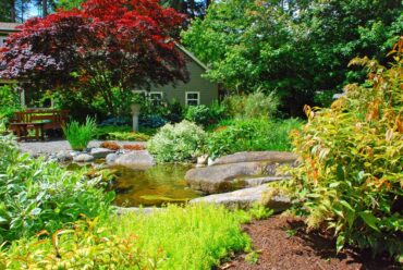 Stream in front of the seating area with a red Japanese maple