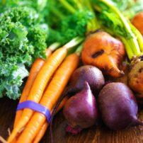 regrow vegetables