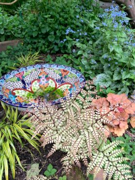 Colorful collection of plants and fountain created from a damaged artisan sink