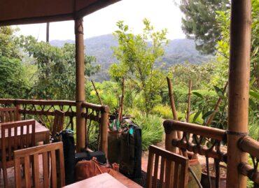 Chiumbi Gorilla Lodge