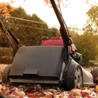 fall lawn mowing