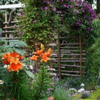 Garden of Delights