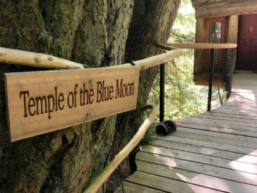 Temple of the Blue Moon