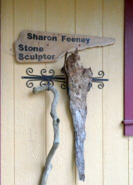 Sharon Feeney