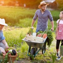 exercise gardening