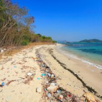 pollution beach