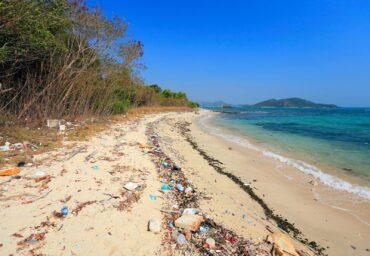 pollution beach