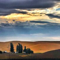 Pullman, Washington
