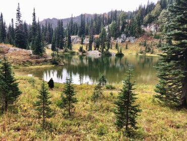 Hiking in Packwood, Washington