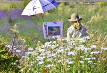 Pat Meras painting in a daisy and lavender field