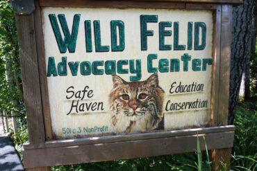 Wild Felid Advocacy Center