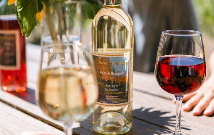 Perennial Vintners Melon de Bourgogne (Photo courtesy Jefte Sanchez)