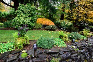 Fall garden (Photo courtesy Stan Noel)