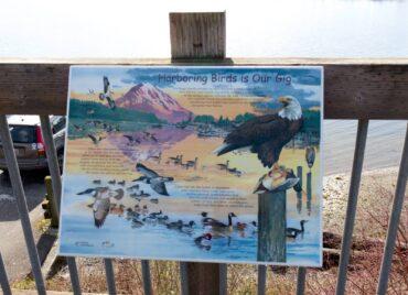 Harbor WildWatch sign